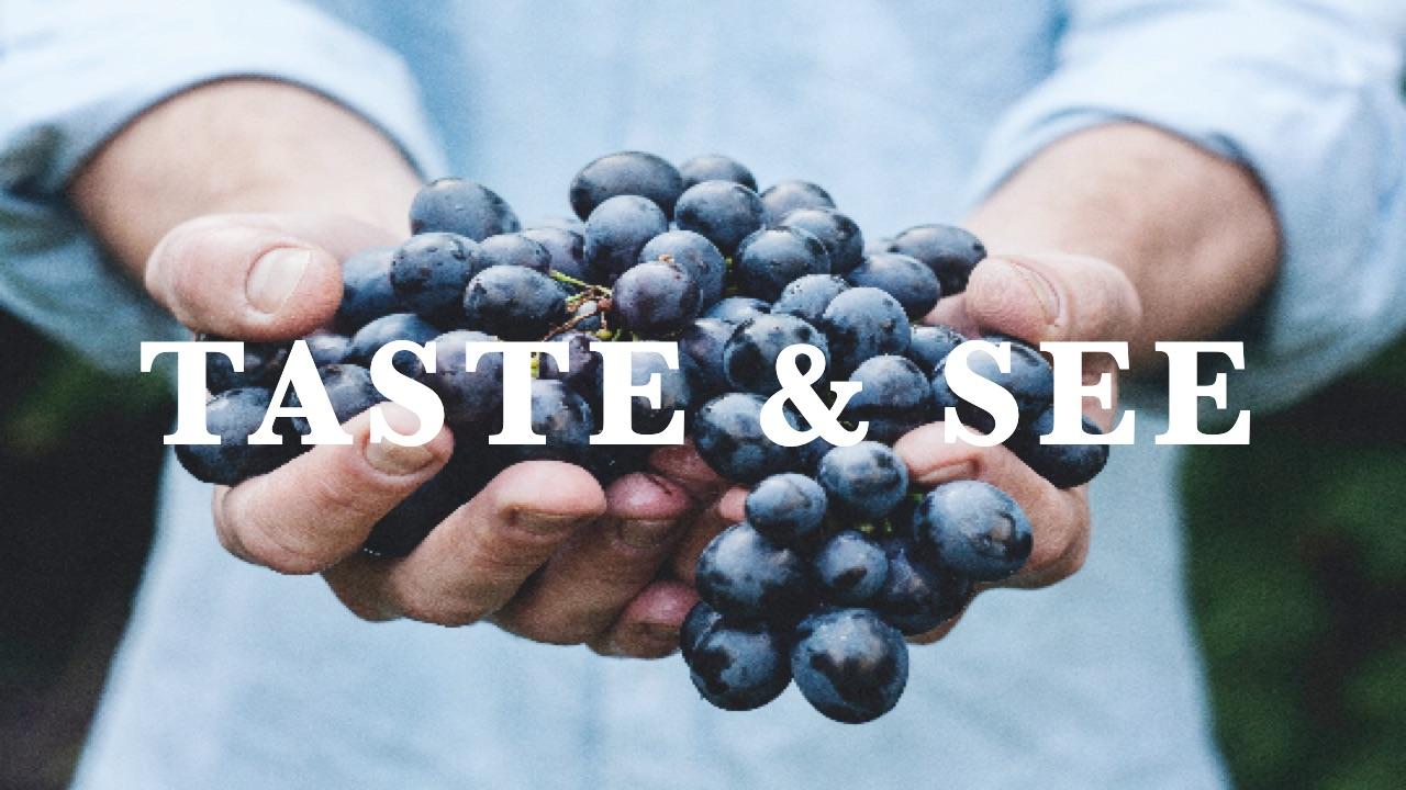 Taste & See (Part 2)